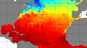 Carte marine des températures en surface