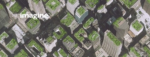 Chicago Green Roofs